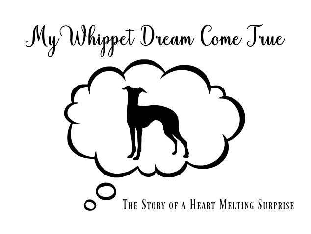 Whippet in dream cloud