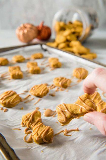 Soft Baked Peanut Butter Pumpkin Dog Treats