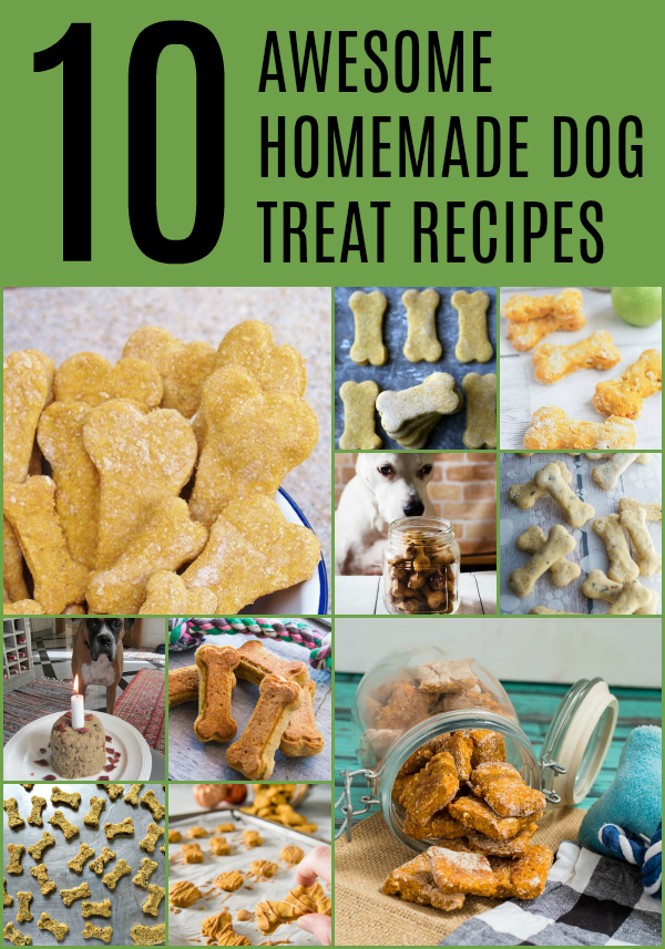 Collage of Homemade Dog Treat Recipes.