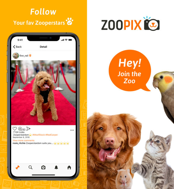 ZooPix App Zooperstar Screenshots