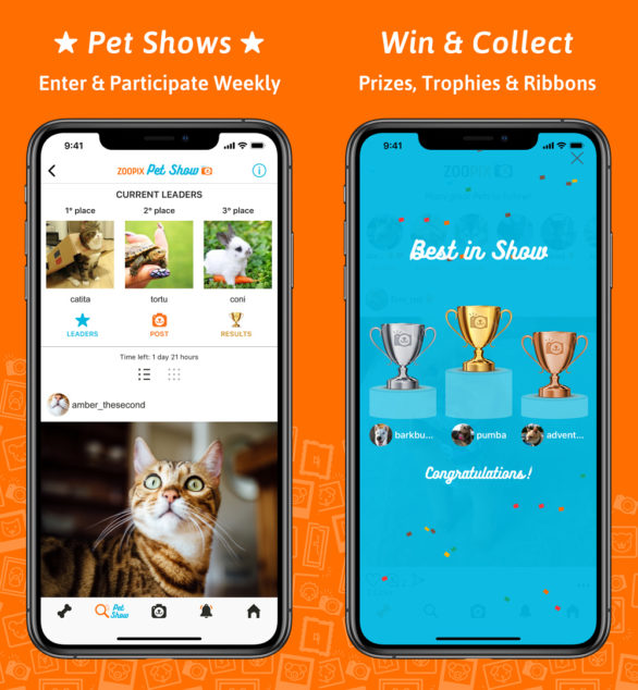ZooPix App Pet Show Screenshots