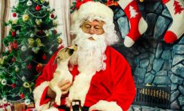 Puppy sitting on Santa's lap