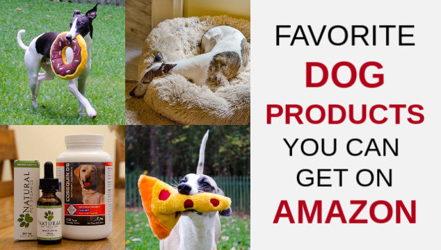 Collage of dog products