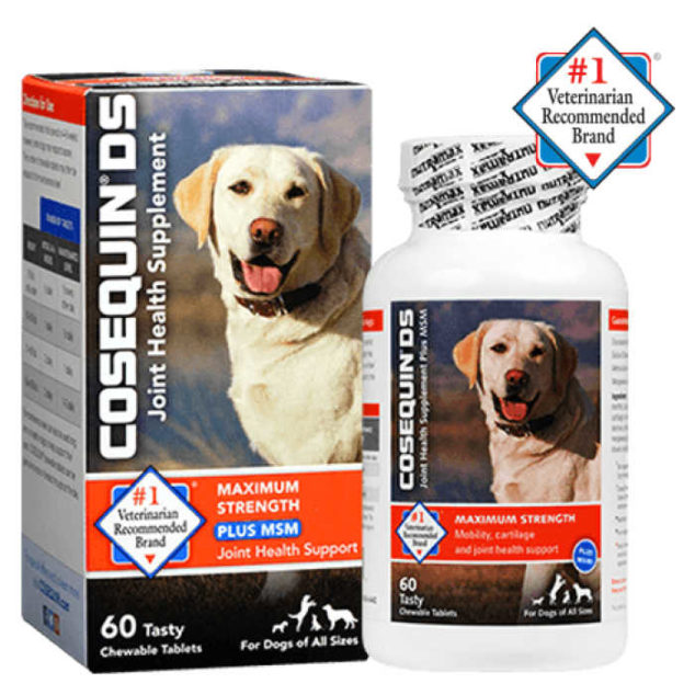 Cosequin DS supplement for dogs
