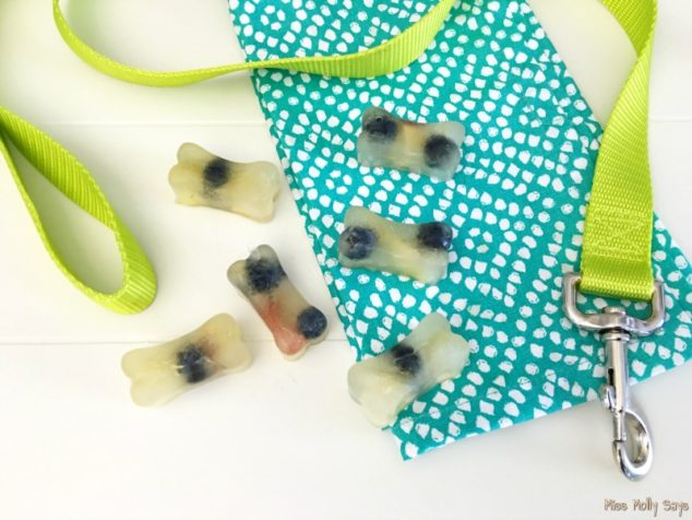 Apple and blueberry dog treats scattered on a table with a dog leash.