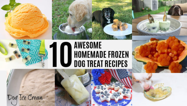 Collage of homemade frozen dog treats.