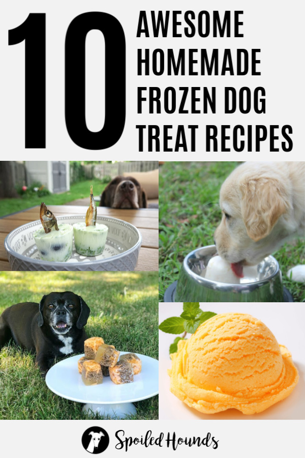 Collage of homemade dog treat recipes with text above it.