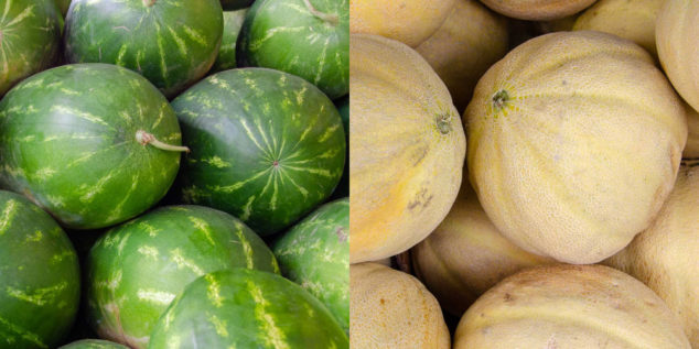 Collage of watermelons and cantaloupes.