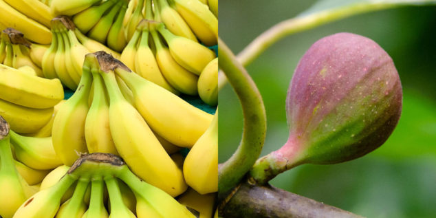 Collage of bananas and fig photos