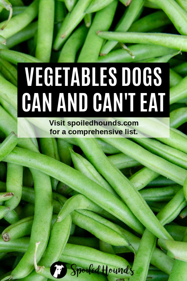 Green beans with text overlay for vegetables dogs can eat and can't eat.