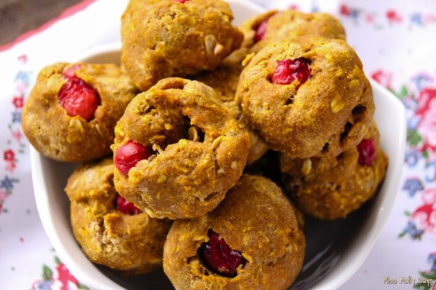 Cranberry pumpkin dog treats in a white bowl