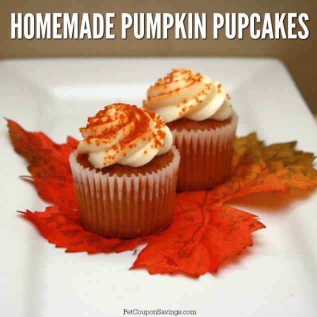 Pumpkin pupcakes on a white platter