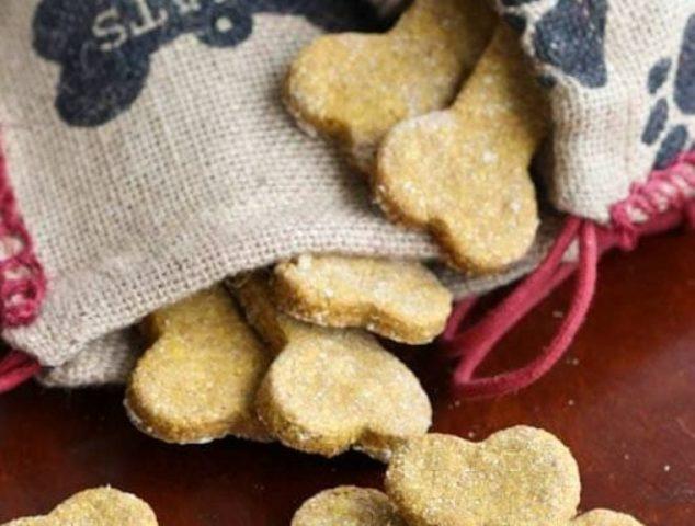Peanut butter pumpkin dog treats in a burlap bag