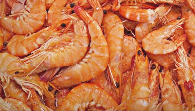 A bunch of shrimp