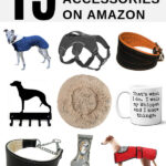 Collage of whippet dog accessories and products on Amazon