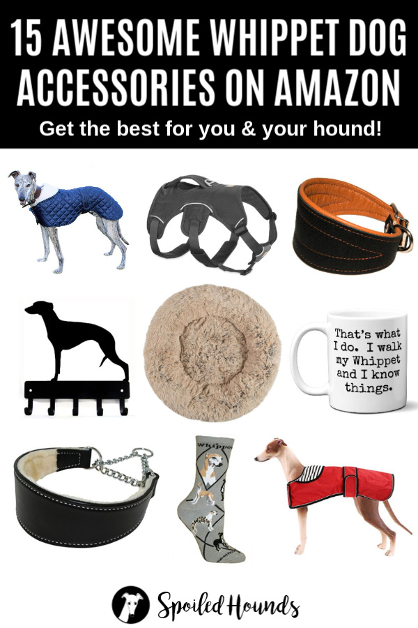 Collage of whippet dog accessories on Amazon