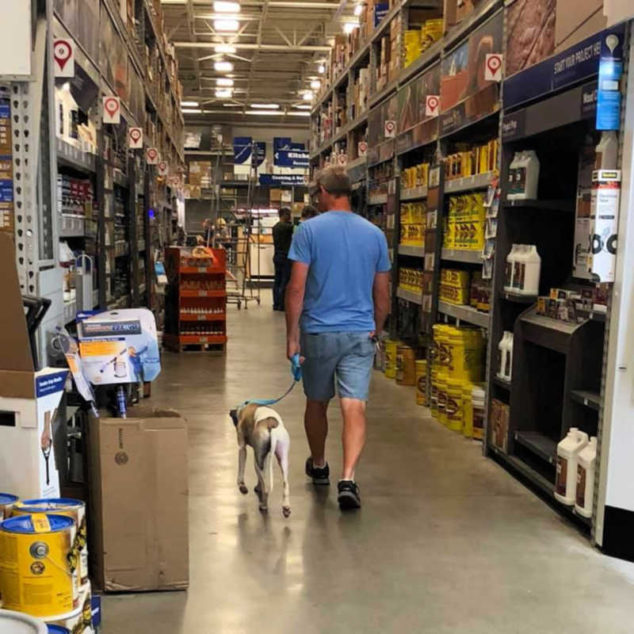 Man and whippet walking inside a Lowes store.