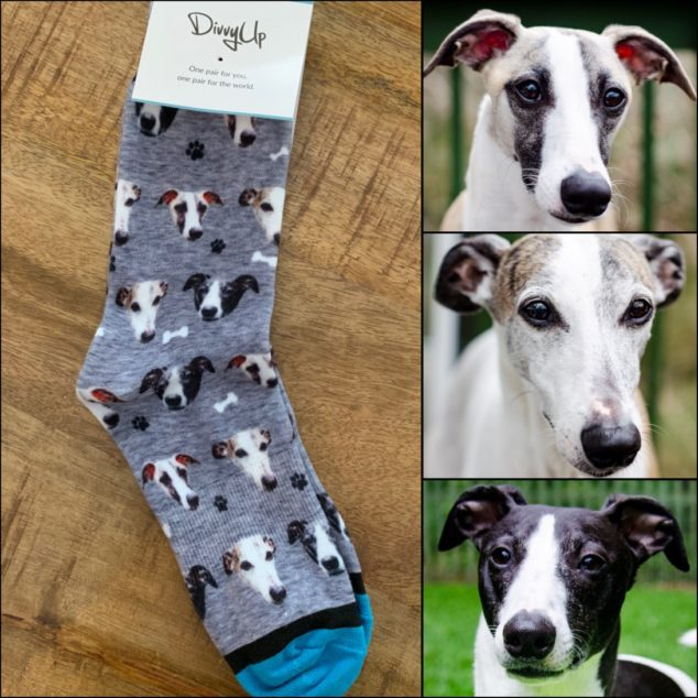 Custom printed socks with three whippets