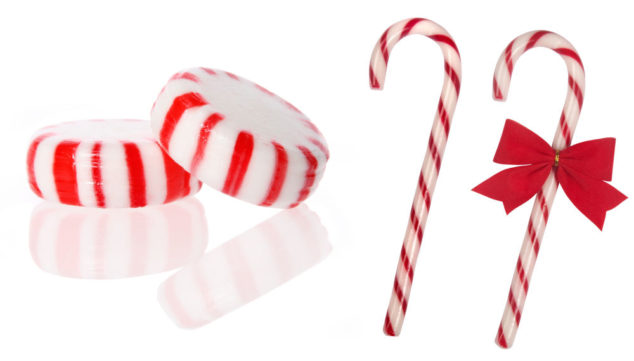 peppermint candy and Christmas candy canes