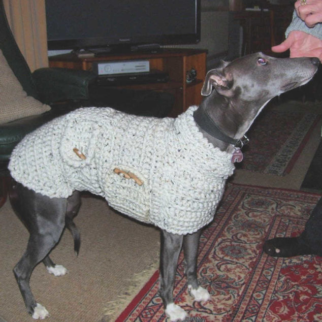 black whippet wearing a crochet dog sweater
