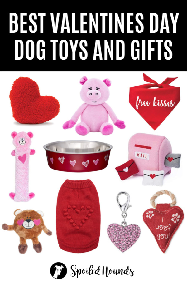 Assorted Valentines Day dog toys and gifts