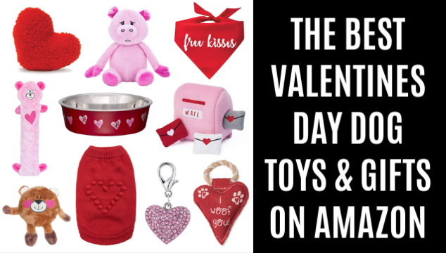 collage of Valentines Day dog toys and gifts