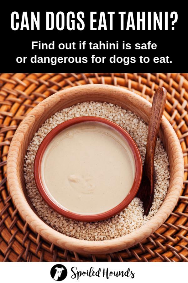 a bowl of tahini and sesame seeds