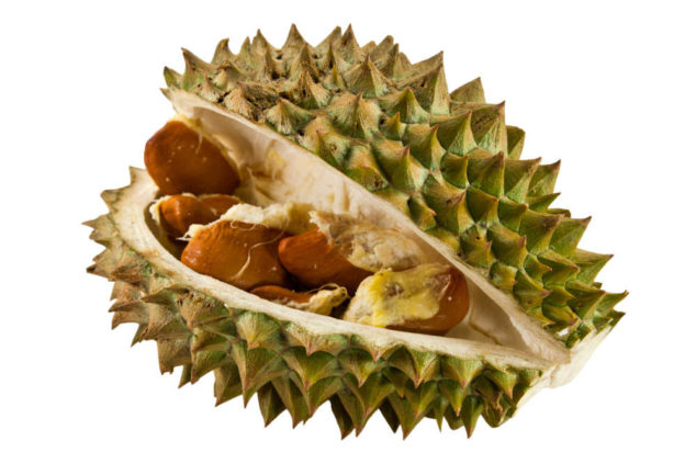 durian fruit and seeds