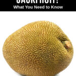 a whole jackfruit