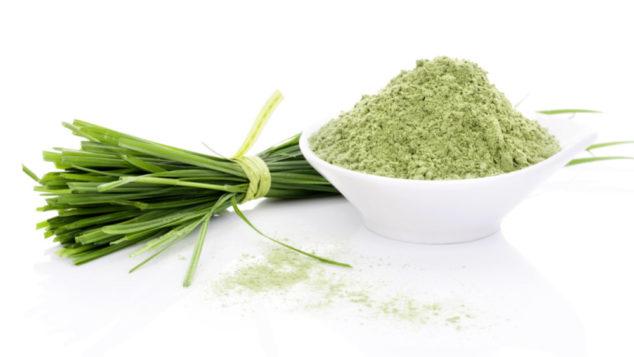 barley grass and barley grass powder