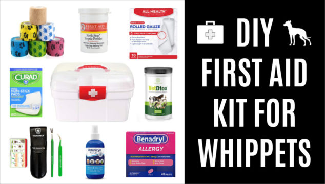 collage of items for a first aid kit for whippets