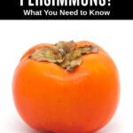 a persimmon