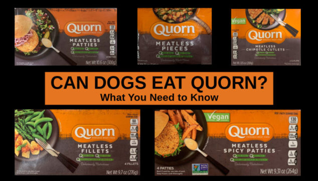 collage of Quorn meatless products