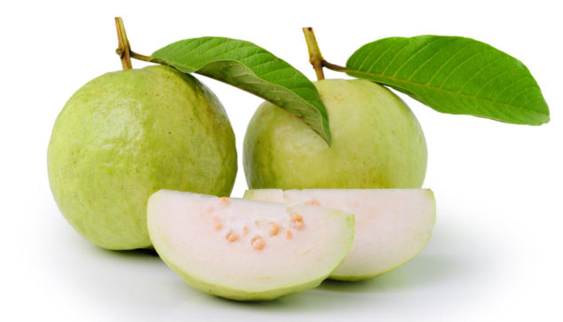 guava fruit, slices, and leaves