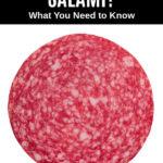 a slice of salami