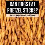 a bunch of pretzel sticks