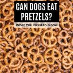 a bunch of pretzels