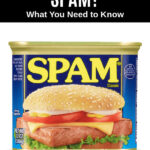 a package of Spam meat