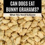 a pile of bunny grahams