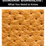 closeup photo of a graham cracker