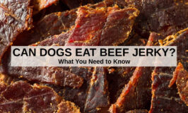 a bunch of beef jerky pieces