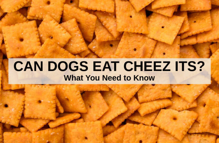 a pile of Cheez Its cheese crackers
