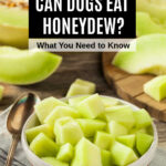 honeydew melon pieces in a bowl