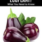 three eggplant and eggplant leaves