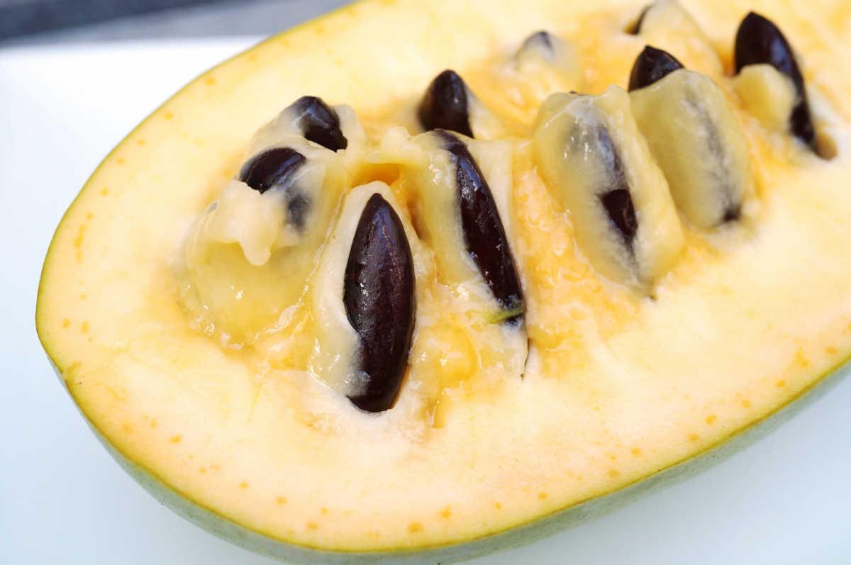 flesh and seeds of pawpaw fruit