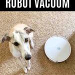 whippet dog sitting next to a Yeedi k650 robot vacuum