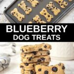 homemade blueberry dog treats on a baking sheet and in a stack