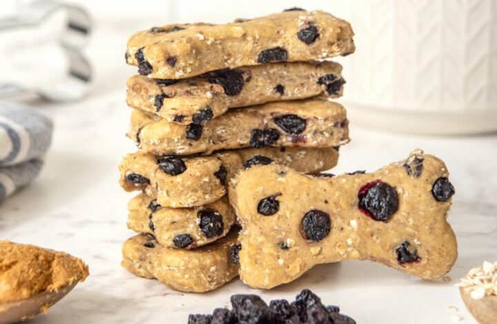 a stack of homemade blueberry dog treats, peanut butter, dried blueberries, and oats
