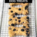 homemade blueberry dog treats on a wire rack