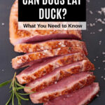 cooked and sliced duck breast
